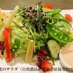 自然農法サラダ